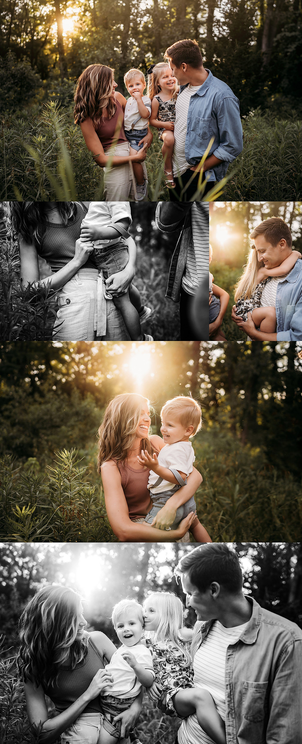 Indianapolis indiana Newborn pregnancy announcement Photographer, Alex Morris Design, dogs