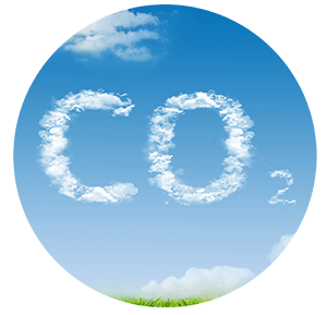 CO2 reduced 300px.png