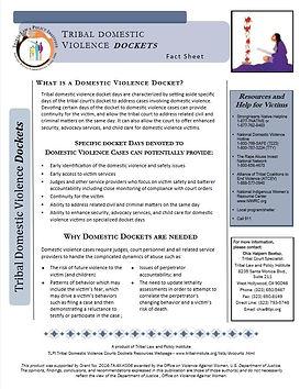 DV Docket Fact Sheet.JPG