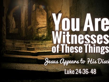 """""""You are Witnesses"""""""