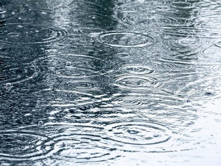 The Rain !!!
