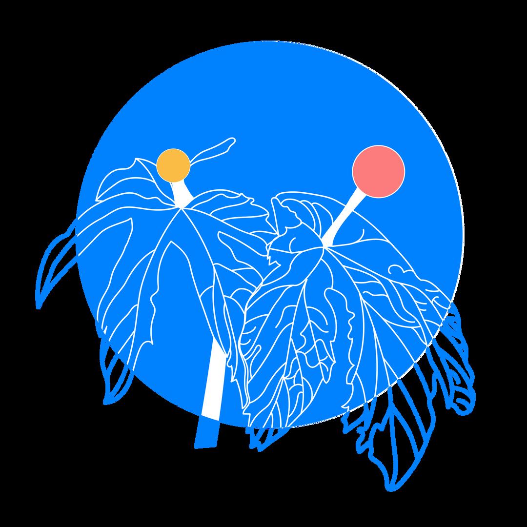 Goldenseal_doula_logo-04.png
