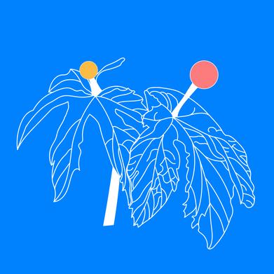 Goldenseal_doula_logo-06.png