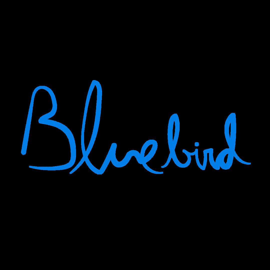 BluerBird_logos-03.png