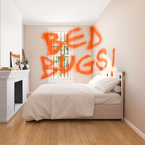 bedbugs_insta.jpg