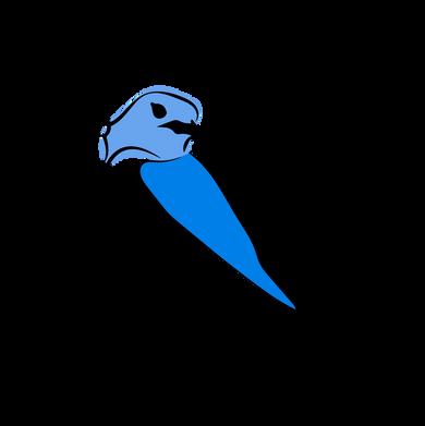 BluerBird_logos-05.png