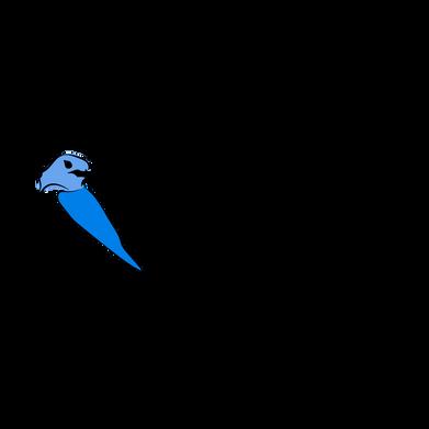 BluerBird_logos-04.png