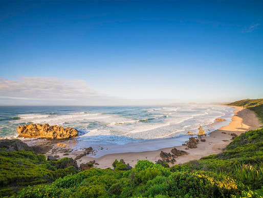 Driving South Africa's Garden Route