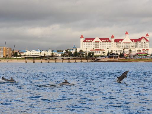Port Elizabeth ranks 5th on Airbnb