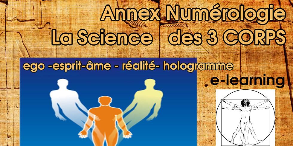 Le corps électromagnétique (esprit physique+ego) + Bonus Structure et Contenu des Pensées