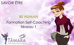 BE HUMAN _ Niveau 1.JPG