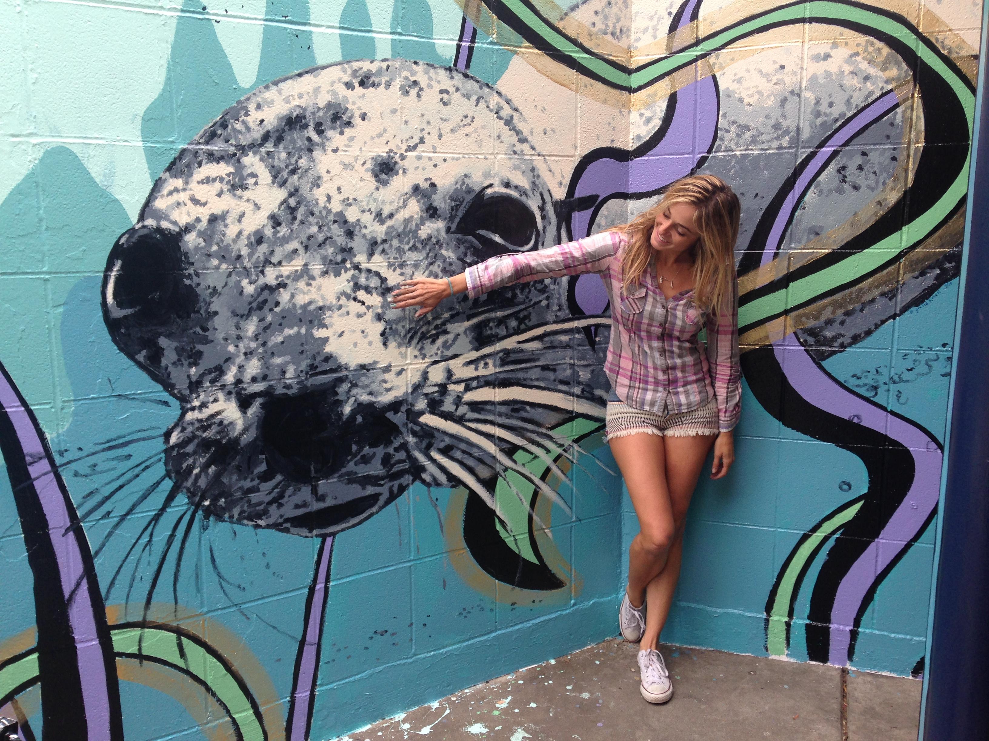 Marina Del Rey Sea Lion Mural