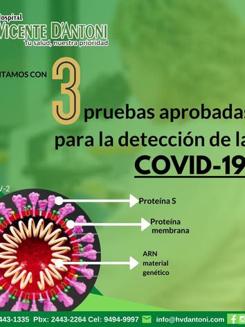 3 Prueebas aprobadas para la detección de la COVID-19