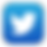 twitter icon.png