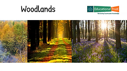 Conservation Fact File 4 - Habitats Woodland