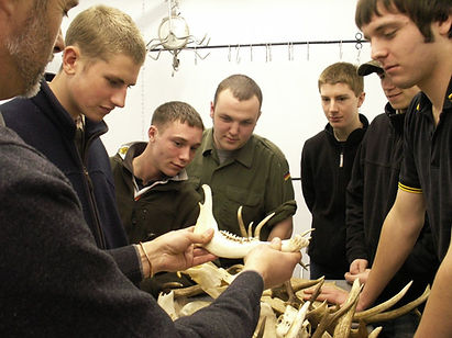 Students examining a deer jaw bone