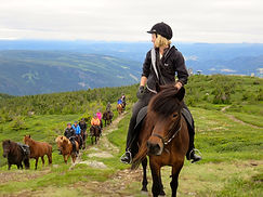 Mountain ride IMG_1104.jpg