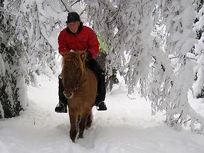 Winter Riding IMG_4095 2.jpg