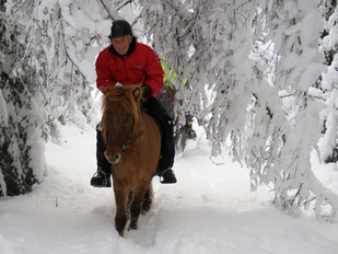Winter Riding IMG_4095 2.jpg