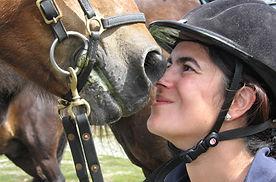 Hest på for2.jpg
