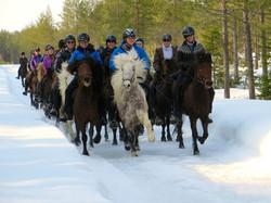 Winter ridingIMG_1413