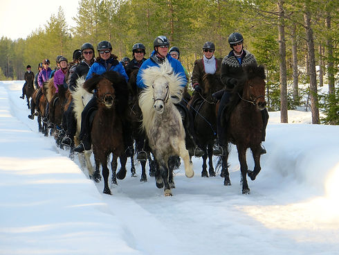 Winter ridingIMG_1413.jpg