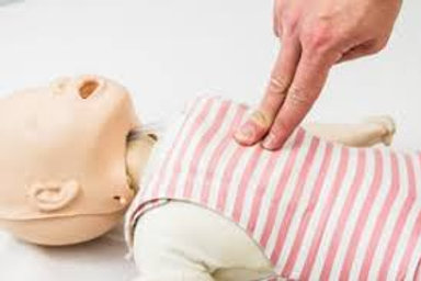 Company PediatricPlus CPR, AED, and First Aid for Children/Infants/and Adults