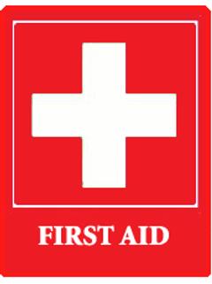 Individual PediatricPlus, CarePlus, or Basic CPR