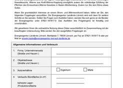 Fragebogen für Strom- und Energieverbund