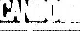 Logo_CanDoIT_weiß-ohne_komplett_rgb.png