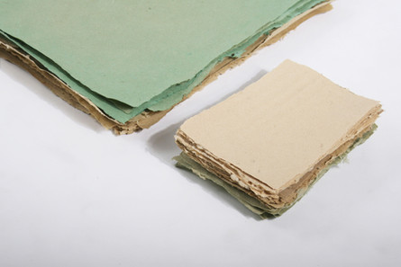 PaperMaking - Vetiver