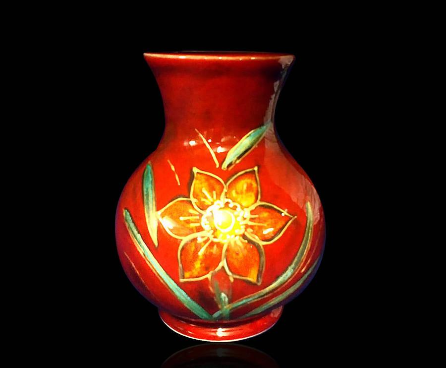 Daffodil Trojan.jpg
