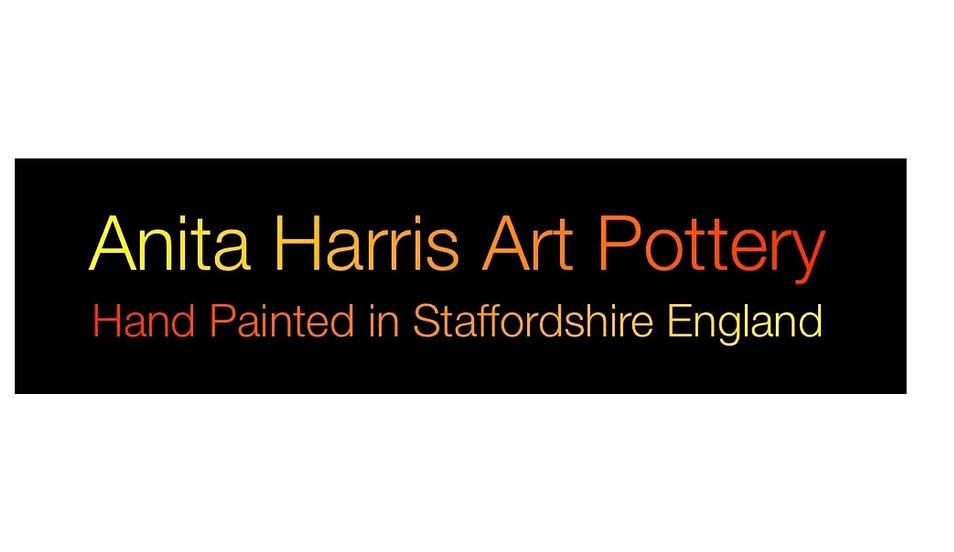 Anita Harris painting and glaze demonstration