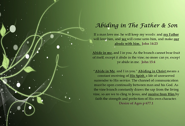 Abide in Father and Son