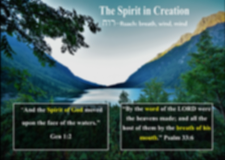 Spirit in Creation