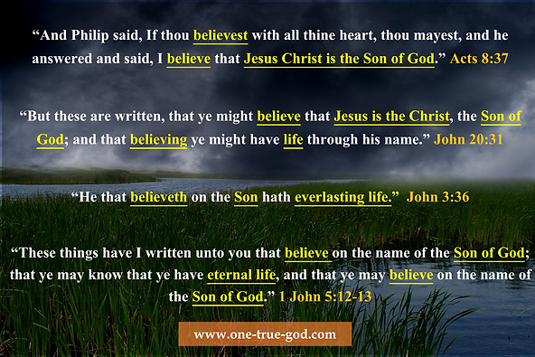 Belief In Jesus Being the Son of God