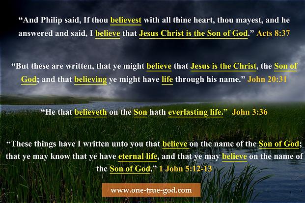 Belief In Jesus Being the Son of God