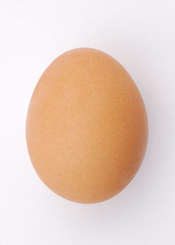 Entropy's Egg