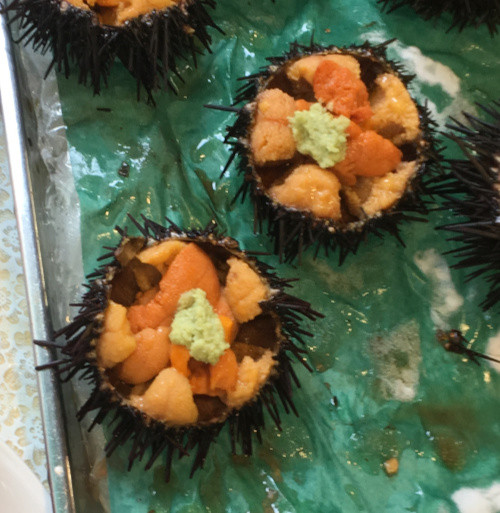 Sea Urchins prepared with a dash of wasabe