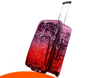 violet's valise