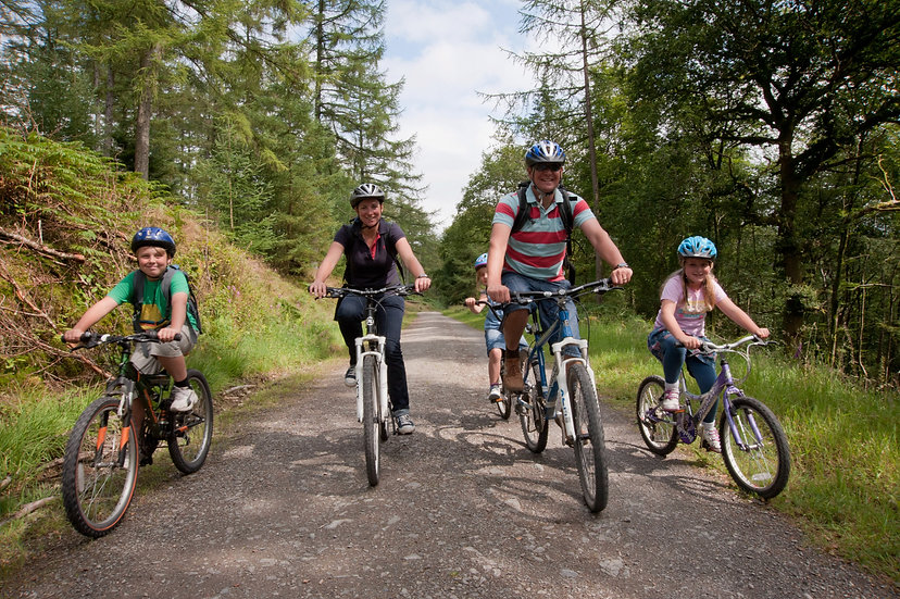 Sherwood Pines Cycles