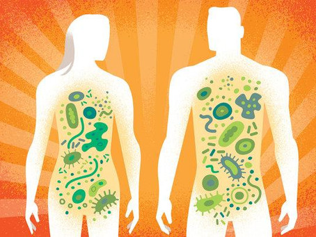 Gut Health For Life - Emerging Research on the Human Gut Microbiome