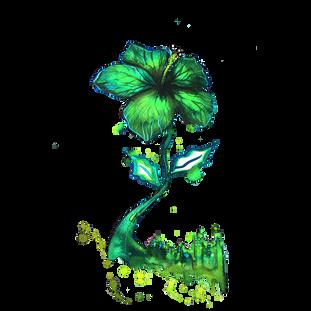 """Flower City"""