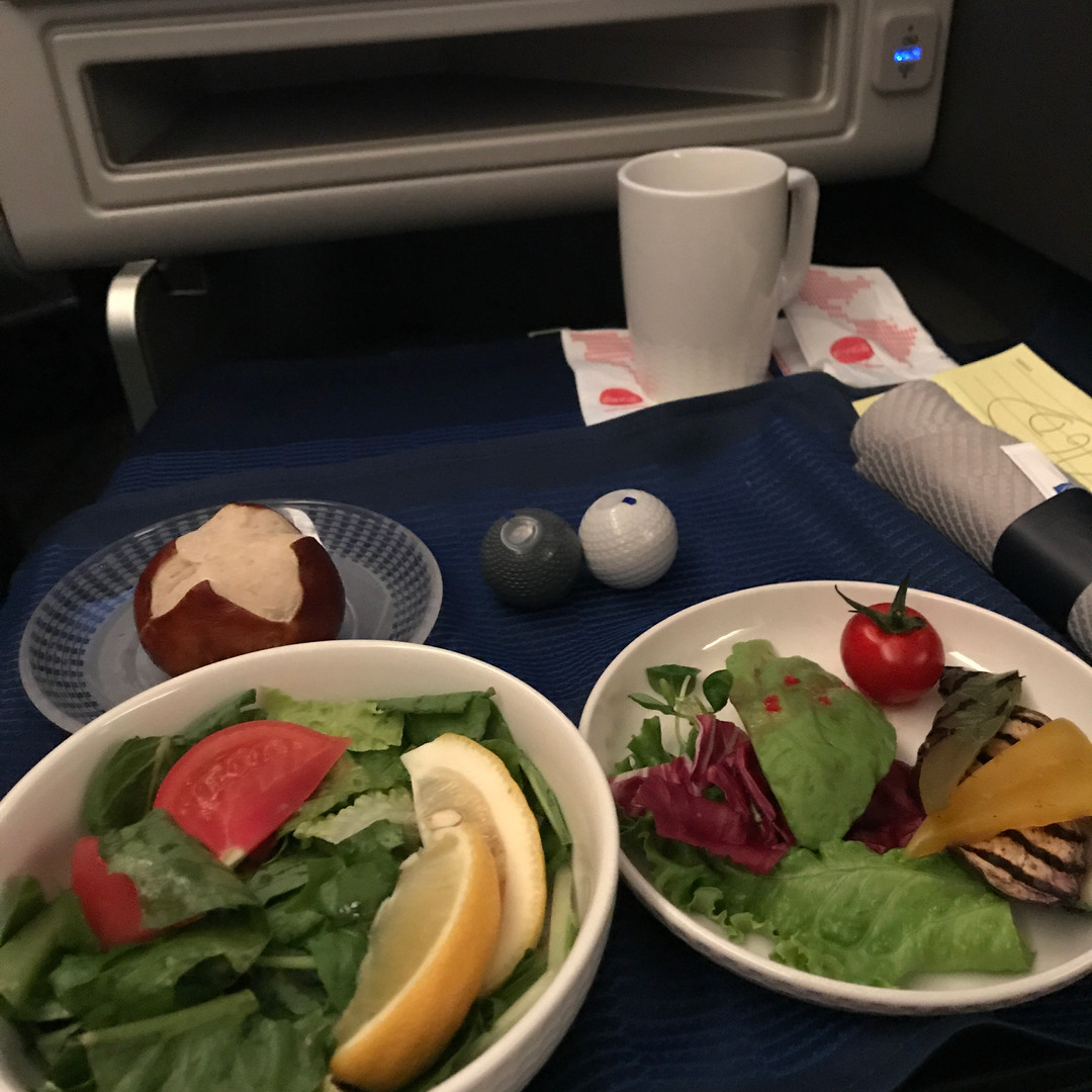 VGML appetizer on United Airlines