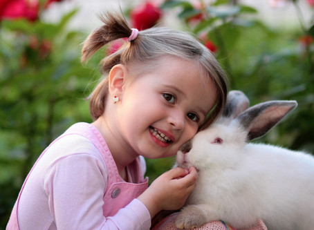 Animals: On Raising Human Children