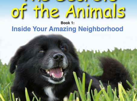 "Macaroni Kid Endorses ""The Secrets of the Animals"" Books for Children"