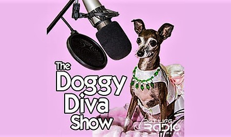 The Doggy Diva Show Interview: Dec 2019