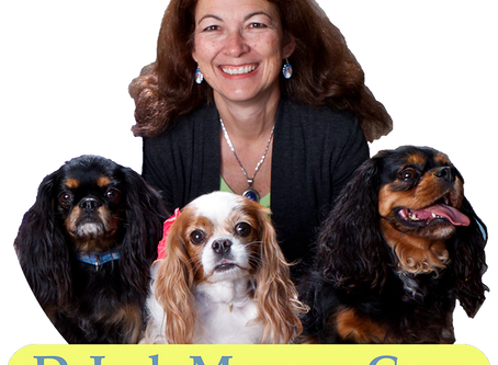 The Dr. Judy Morgan Healthy Pets Show With Sandra Mendelson