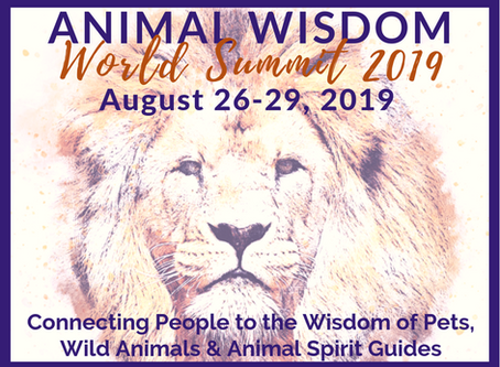 The Animal Wisdom World Summit Interview