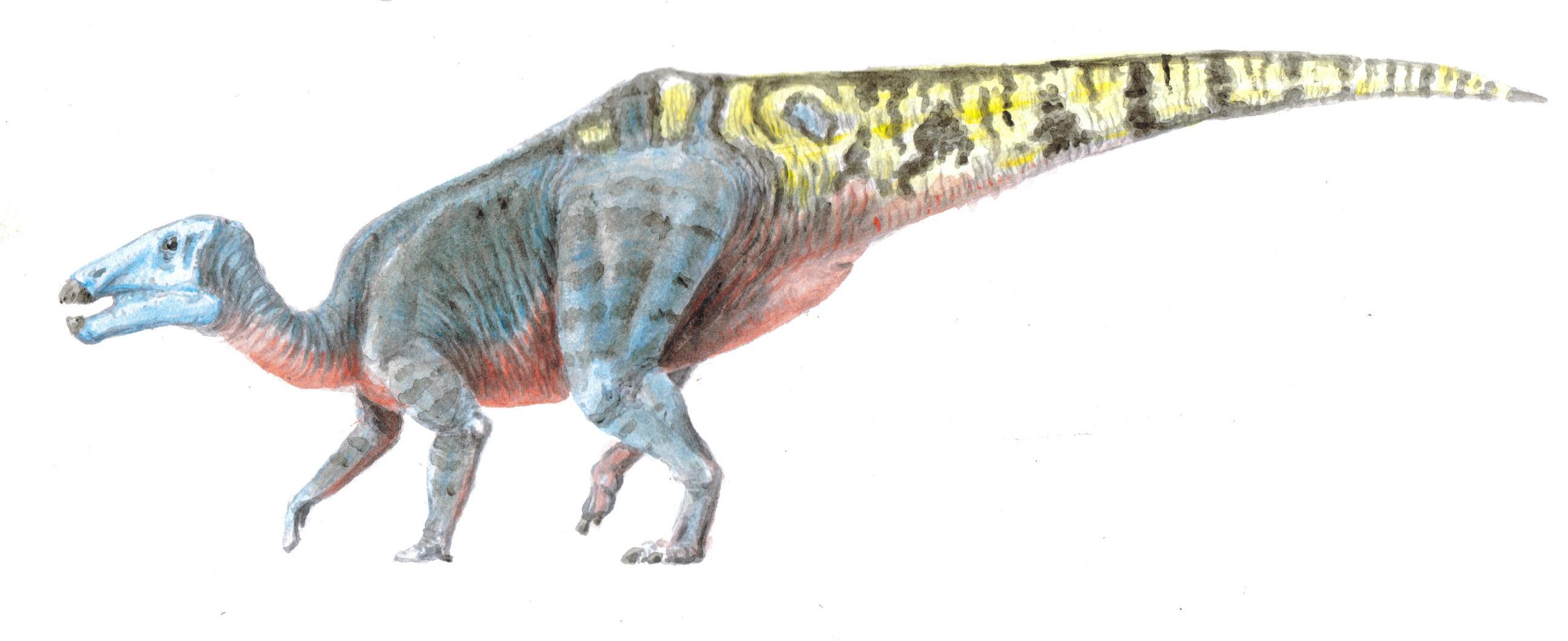 Shantungosaurus_edited